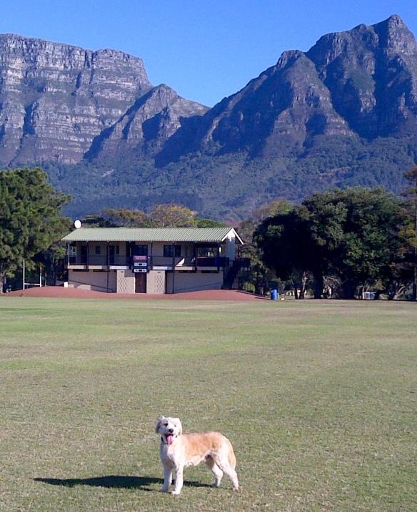 Cape Town-20160504-00676